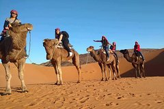 Excursions,Excursions,Activities,Multi-day excursions,Multi-day excursions,Adventure activities,Nature excursions,Excursión to the desert