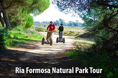 City tours,Activities,Segway tours,Adventure activities,Nature excursions,