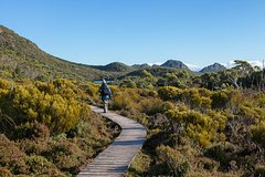 Imagen Hartz Mountains and Tahune Airwalk - private sightseeing and photography tour from Hobart