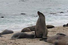 Imagen Galapagos Surprising 4 Days