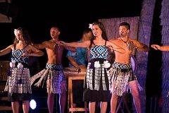 Tickets, museos, atracciones,Gastronomía,Teatro, shows y musicales,Comidas y cenas especiales,Espectáculo Luau