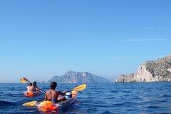 Chasing Syrens Transparent Kayak Tours