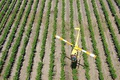 Imagen Barossa Valley Deluxe: 30-Minute Helicopter Flight