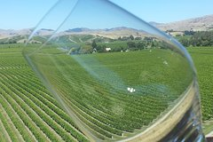 Imagen Relaxed Fun Full Day Wine Tour from Blenheim