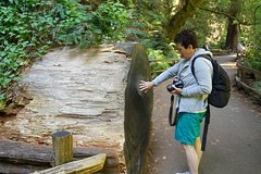 Actividades,Activities,Actividades acuáticas,Water activities,Excursión a Muir Woods,Excursion to Muir Woods