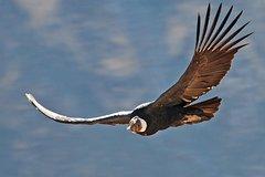 Imagen Trekking Llahuar-Fure-Oasis 4d-3n