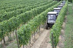 Vineyards Eco-Tour on Board of Electric off-road cars with Wine Tasting