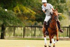 Imagen Lecciones de polo desde Buenos Aires