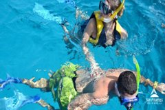 Activities,Water activities,Excursion to Tiran Island
