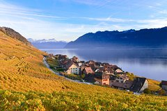 City tours,City tours,City tours,Excursions,Bus tours,Other vehicle tours,Full-day tours,Full-day excursions,Excursion to Montreux