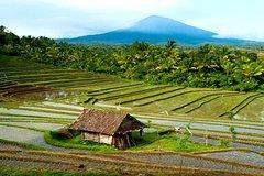 Salir de la ciudad,Excursiones de un día,Excursión a Bali