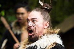 Imagen Ko Tane Maori Performance