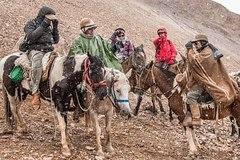Imagen The Andes by Horseback Riding