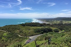Imagen Muriwai Scenic Wine Tour from Auckland