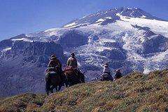 Imagen Excursión de 7 días a los Andes desde Mendoza a Chile a caballo