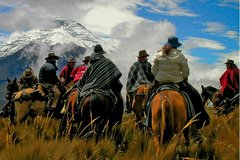 Imagen Aventura de día completo de equitación en Mendoza