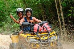 City tours,Activities,Activities,Adventure activities,Adventure activities,Adrenalin rush,Adrenalin rush,