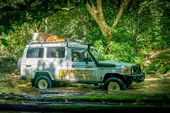 Full Day Rainforest 4WD Tour from Cairns