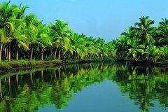 Kochi (Cochin) Kerala Insignia Special Kochi Shore Excursion: Backwater Houseboat Tour and Fort Kochi 7491P41