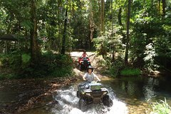 Imagen Half-Day ATV 4-Wheel Buggy Rainforest Day Trip from Cairns