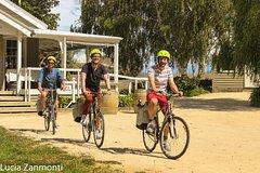 Imagen Self Guided Martinborough Wineries Bike Tour