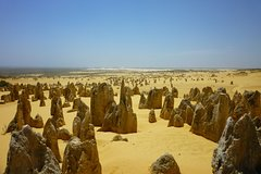 City tours,Tours with private guide,Specials,Excursion to Pinnacles,Perth Tour
