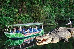 Imagen Daintree River Cruise