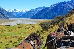 Imagen Clippity Clops Scenic Day Tour & Clydesdale Horses High Country Wagon Ride