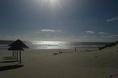 Imagen Excursión de un día a la playa de ambiente gay de Lisboa Beach 19