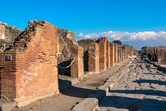 Pompeii and Mount Vesuvius from Naples: Small group tour with tickets included