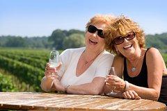 Imagen Classic Wanaka Wine Tour