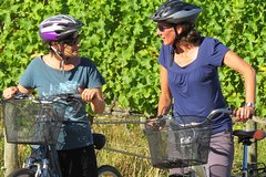 Imagen 6-Hour Marlborough Wine Region Guided Bike Tour