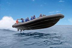 Imagen High-Speed Offshore Thrill Ride to Bondi Beach