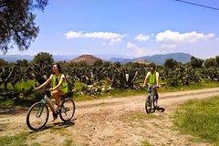 City tours,City tours,Bike tours,Mexico Tour,Excursion to Teotihuacan