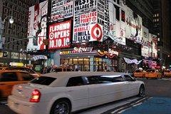 New York City Private Van City Tour