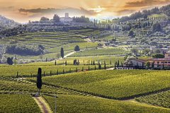 Tuscan Experience - Private Shore Excursion to Chianti and Siena from Livorno