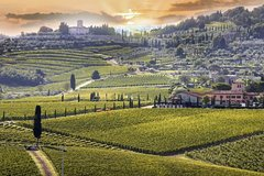 Chianti Wine Tour with Siena - Private Driving-guided Tour from Florence