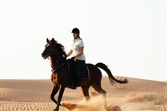 90 Minutes Horse Riding in sands of Arabia