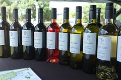 Imagen Private Tour: Bay of Islands Tour with Wine Tasting