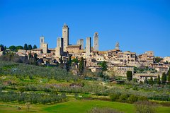Private Tuscany Day Tour: San Gimignano and Chianti Wine Region from Floren