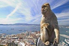 Imagen Gibraltar Full Day Tour from Seville