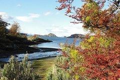 Imagen Shore excursion to Tierra del Fuego National park with hiking
