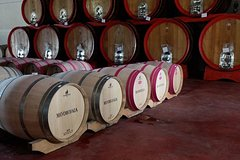 Small Group Tour: Tuscany Wine Tour Siena and San Gimignano - Full Day Tour from Rome - Tasting and lunch included