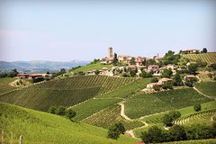 Private Barolo Wine Tour, 1 full day for Discover vineyards and cellars