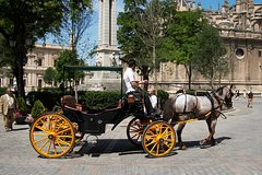 Imagen Private Horse Carriage Ride and Walking Tour of Seville