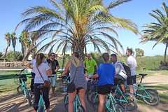Imagen Cycling and Gastronomy in the Valencian Orchand