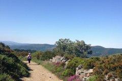 Camino de Santiago: Camino Primitivo