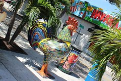 Best of Little Havana Luxury Small Group Experience