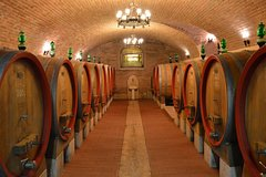 Pagus Wine Tours - Two Amarone wineries half day wine tour