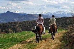 Activities,Adventure activities,Nature excursions,Excursion to Rila Monastery,Glozhene Monastery